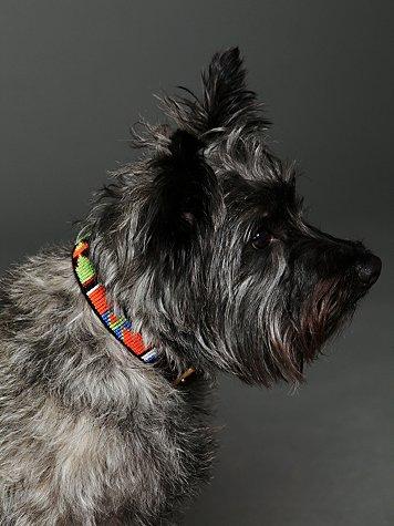 Tembo Beaded Collar