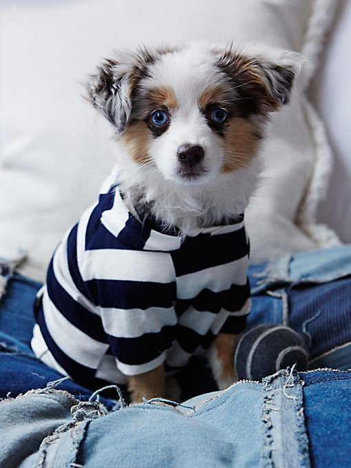 Love Me Stripe Hoodie