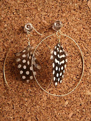 Cassin's Feather Earrings